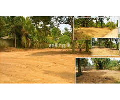 Land for sale in KADAWATHA