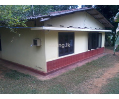 3BR House for rent in attanagalla