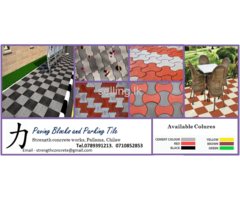 Paving Blocks & Parking Tile