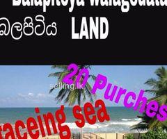 20 purches land at walagedara,balapitiya