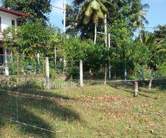 Land for sale in wadduwa.