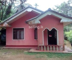 20p with house in neluwa