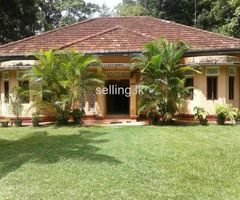 House in Mirissa for sale