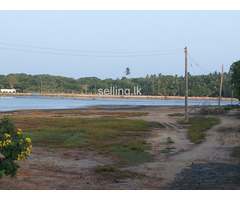 LAND FOR SALE  in HAMBANTOTA.- RANNA.