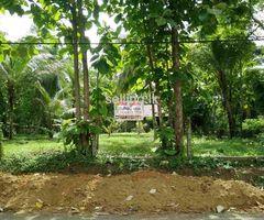 Land for Sale in Katukenda Dankotuwa