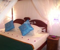 Rooms in Aluthgama - Chandrika villa