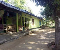 Land for sale in  Polonnaruwa Jayabumi  oppu