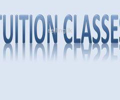Tution for Grade 01 - Grade 05 Students  (Including Grade 05 Scolership Exam)
