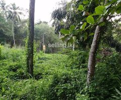 Land for Sale Near Kuliyapitiya